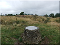 SO3283 : Toposcope, Sunnyhill by David Brown