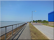 TA0626 : The Trans Pennine Trail at St Andrews Quay, Hull by Ian S