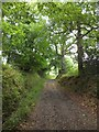 SS6603 : Bridleway between Ashridge Wood and Ashridge Court by David Smith
