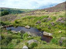 SE0511 : Dam on a stream by Humphrey Bolton