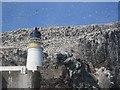 NT6087 : Bass Rock Light by Richard Webb