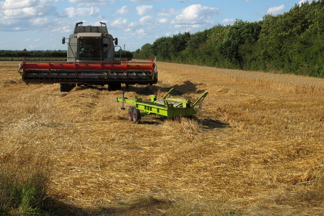 Arable field with harvester