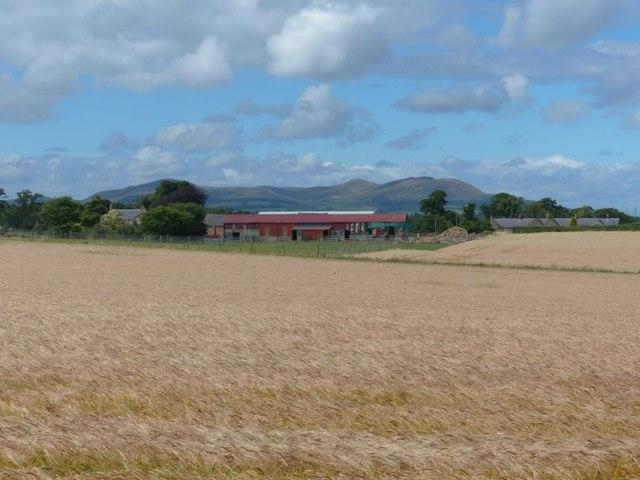 Carrington Barns