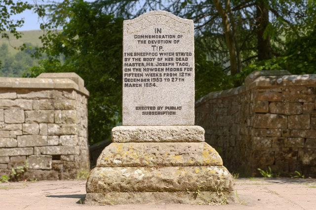 Tip the Sheepdog Memorial, near Derwent Dam