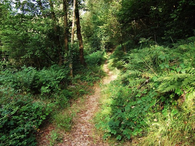 Footpath near Llanpumsaint