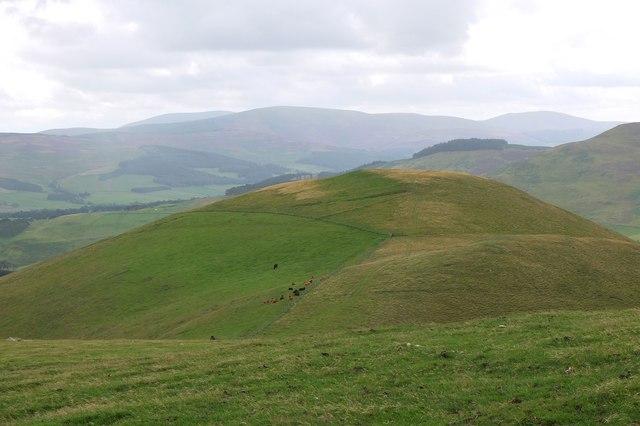 Hamildean Hill