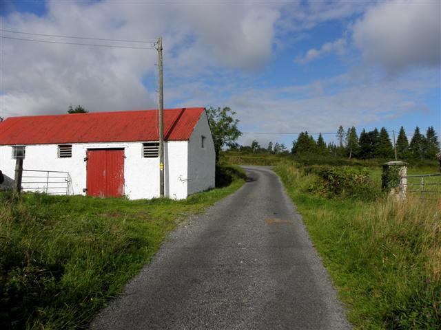 Road at Derryvella