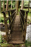 NY1700 : Footbridge Across Stanley Ghyll Beck, Cumbria by Peter Trimming