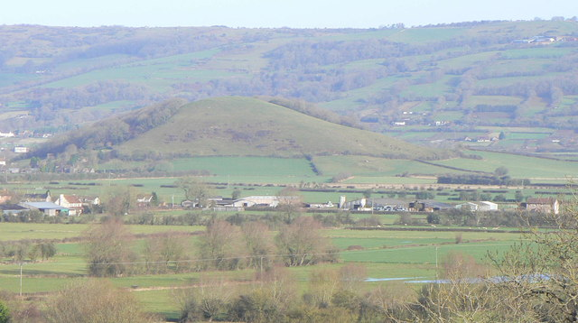 Nyland Hill and the Mendip Hills from Wedmore