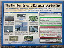TA0225 : Information board at Hessle foreshore by Ian S