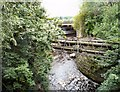 SJ8990 : River Tame by Gerald England