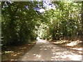 TM1185 : Church Lane & entrance to Park Farm by Adrian Cable
