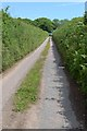 SX8052 : Lane from the A3122 to Ridge Lane Cross by Robin Stott