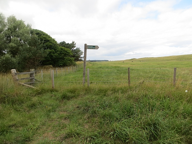 Footpath sign, Ravensheugh by Richard Webb