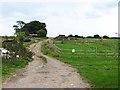 NZ2403 : Farm road, Kilnsey House Farm by Oliver Dixon
