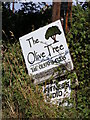 TM1083 : The Olive Tree sign on Hall Lane by Adrian Cable