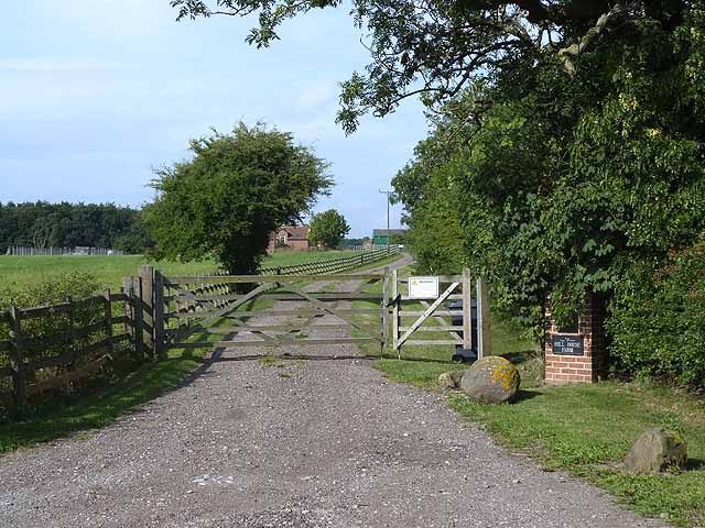 Driveway to Hill House Farm