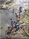 SW3526 : Rockpooling in Sennen Cove harbour by Rod Allday