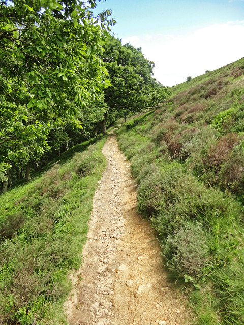 Dundale Griff Footpath