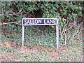 TG2805 : Sallow Lane sign by Adrian Cable