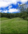SE8593 : Meadow Footpath to Horcum Wood by Scott Robinson