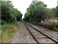 SO2172 : View south from the level crossing near Llangynllo railway station by Jaggery