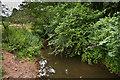 SO5374 : Ledwyche Brook by Ian Capper