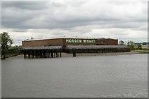TQ3979 : River Thames, Morden Wharf by David Dixon