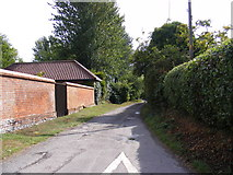 TG2902 : Dranes Lane, Yelverton by Adrian Cable