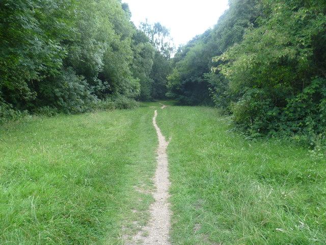 Path on Banstead Heath