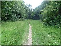 TQ2255 : Path on Banstead Heath by Marathon