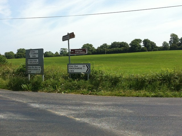 Field at intersection near Borris-in Ossory