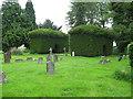 SO9412 : Underneath the arches-Brimpsfield, Glos by Martin Richard Phelan