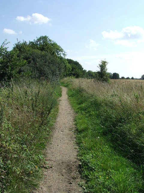 Track Leading To Sergeant's Orchard