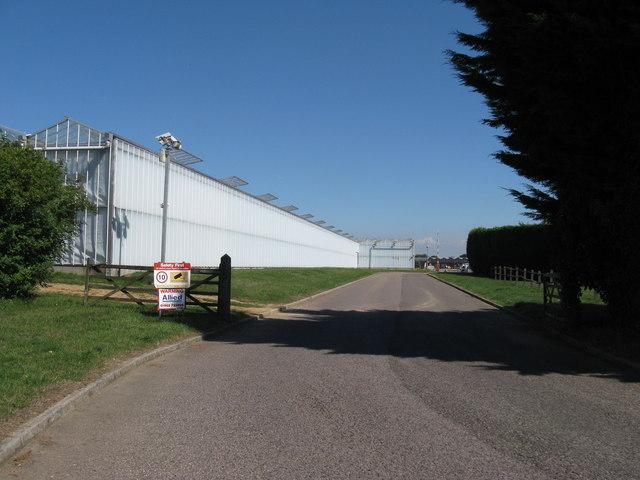 Newlands Nursery by Forbridge Farm