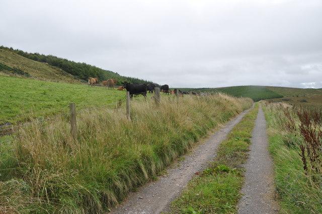 Achnaclach, Kintyre