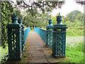 SJ9822 : Iron bridge at Shugborough (1) by Stephen Craven