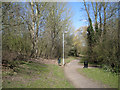 SP0466 : Footpath to Lodge Pool, Lodge Park, Redditch by Robin Stott