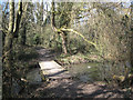 SP0466 : Boardwalk over a channel, Lodge Pool, Lodge Park, Redditch by Robin Stott