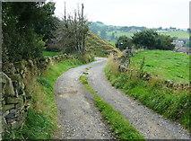SE0813 : Driveway to Heywoods Farm by Humphrey Bolton