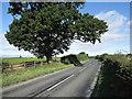 NZ2218 : Bend on B6279 by Trevor Littlewood