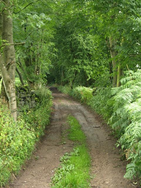 Clough Lane