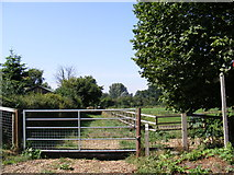 TM3193 : Footpath to the B1332 Norwich Road by Adrian Cable