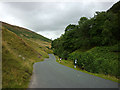 SD6251 : The Trough road in Losterdale by Karl and Ali