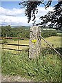 NO4697 : Another rough granite gatepost in WCB country by Stanley Howe