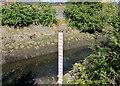 J3674 : Connswater depth gauge, Belfast by Albert Bridge