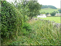 SE0026 : Overgrown footpath past the playing field by Humphrey Bolton