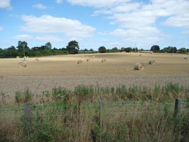 Farmland with Swiss roll straw bales