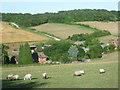 TR0851 : Stour Valley Walk descending to Woodsdale Farm by Marathon