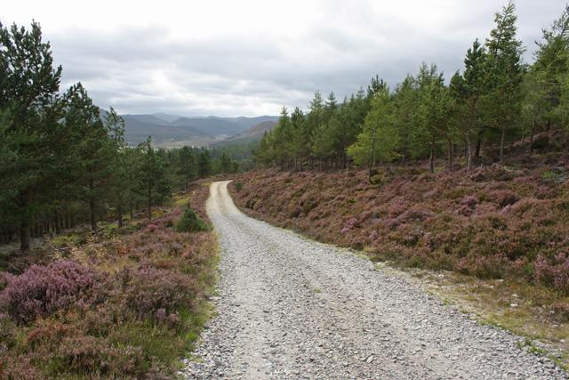 Track north of Alltdourie